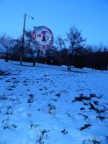 balloon-aerilyn
